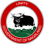 DHFWS Nagaland Recruitment 2020